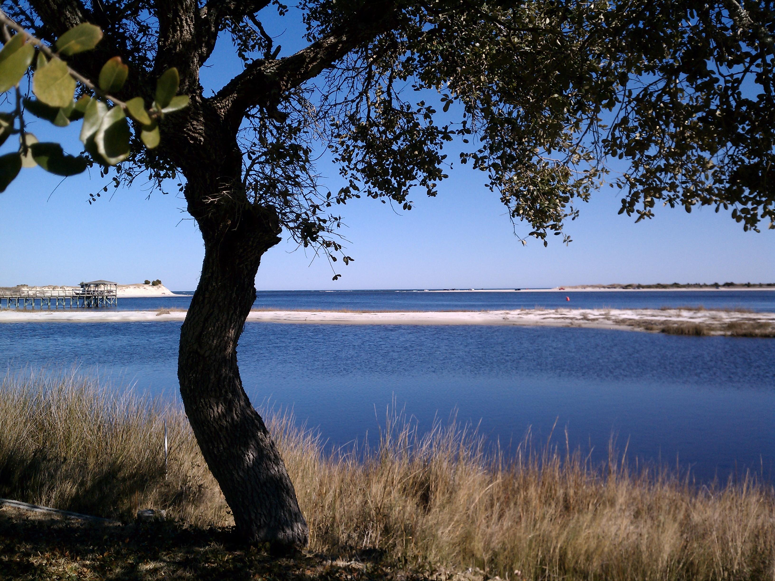 iwyc-ocean-view